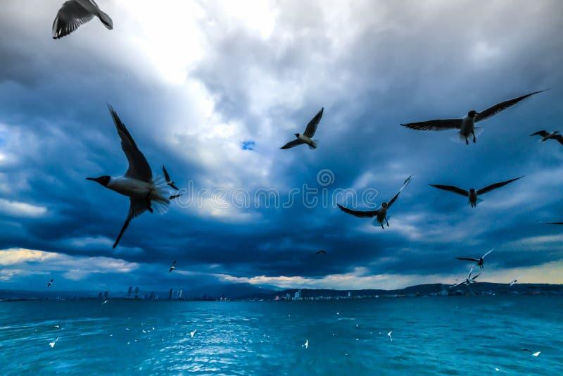 Golf von Izmir die Türkei stockbild