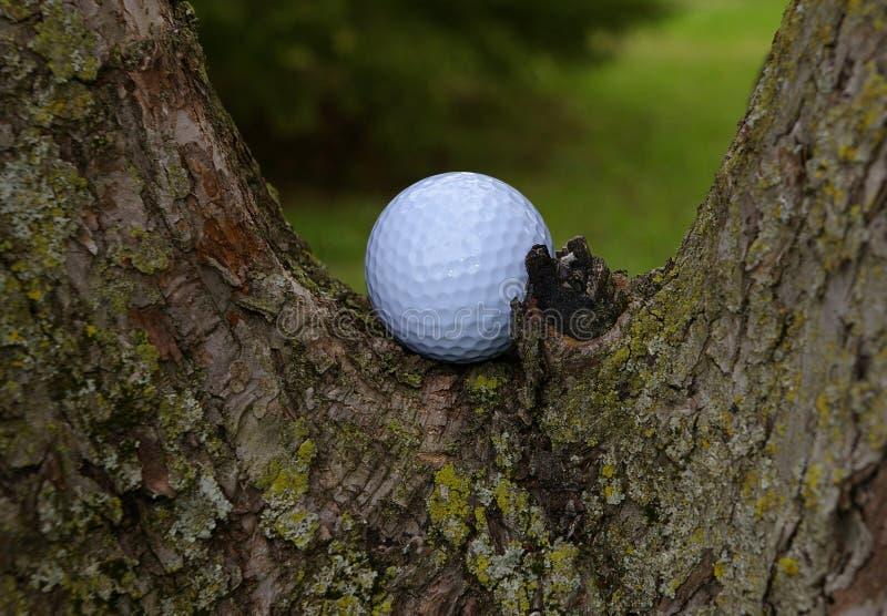 Golf2 royalty-vrije stock foto