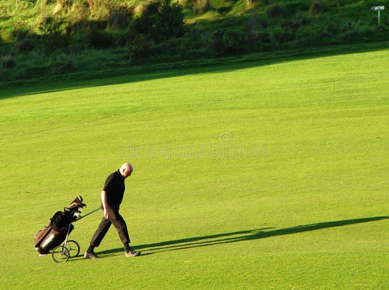 golfare royaltyfri foto