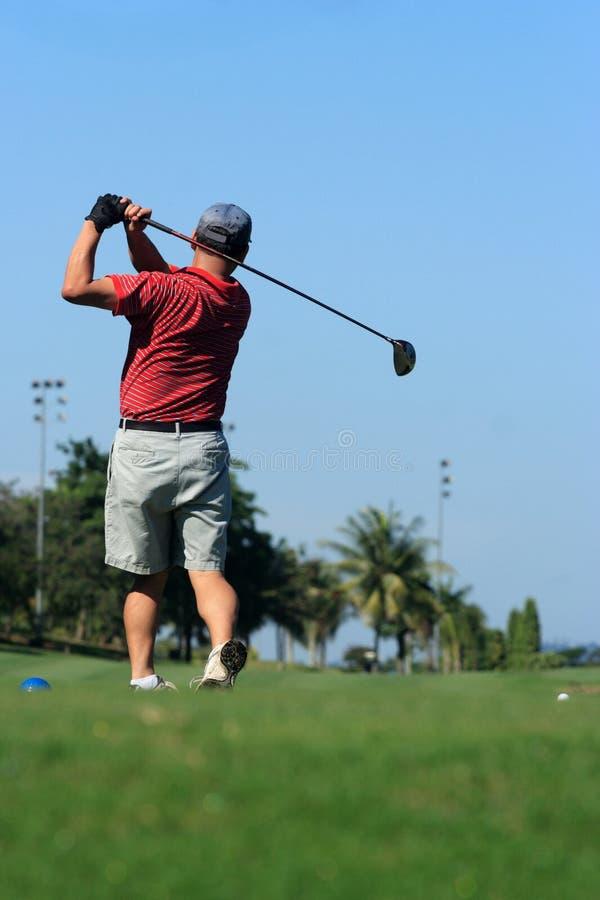 golfare arkivfoton