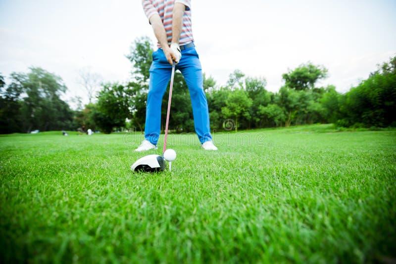 Golfare som får klar att ta ett skott royaltyfri bild
