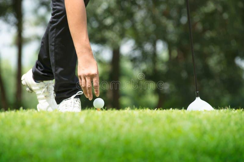 Golfare som förlägger golfboll på utslagsplats på en solig dag på kursen arkivbild