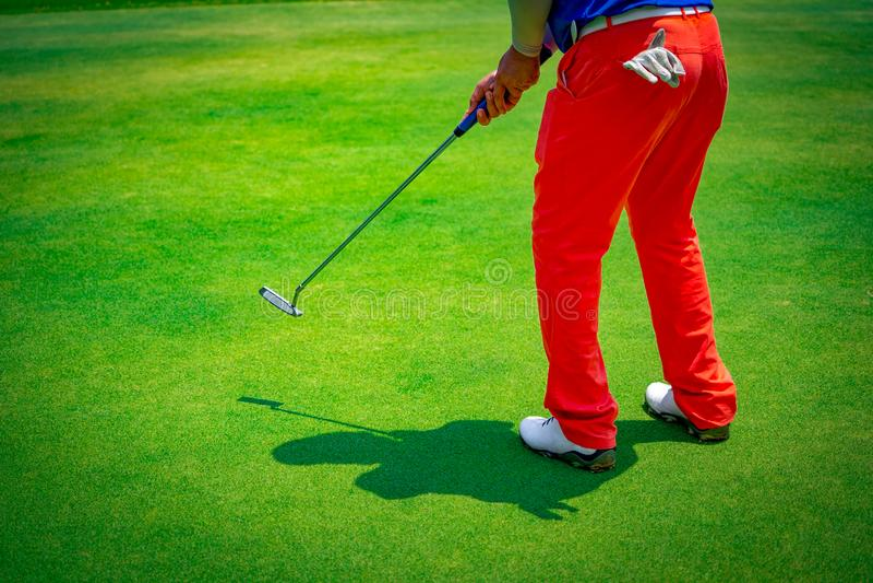 Golfare som spelar s?tta golfboll p? golfbana arkivbilder