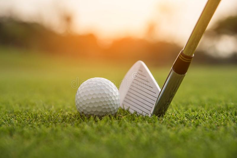 Golfaren sätter golfboll på grönt gräs på golfbanan för att utbildning ska spela golfboll i hål med suddighetsbakgrund a arkivbilder
