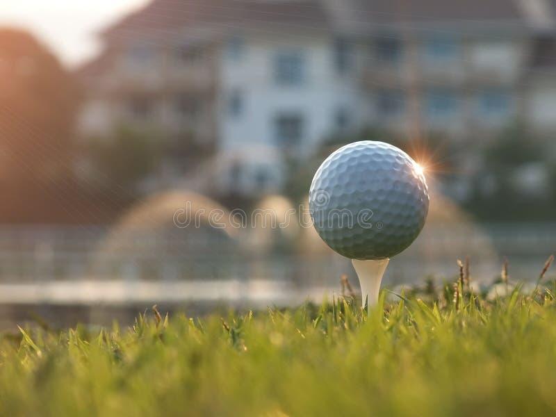 Golfathleten fingen an, ein Holz zu schlagen Im grünen Rasen für Sieg im Golfturnier stockfotografie