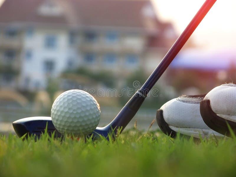 Golfathleten fingen an, ein Holz zu schlagen Im gr?nen Rasen f?r Sieg im Golfturnier lizenzfreies stockfoto