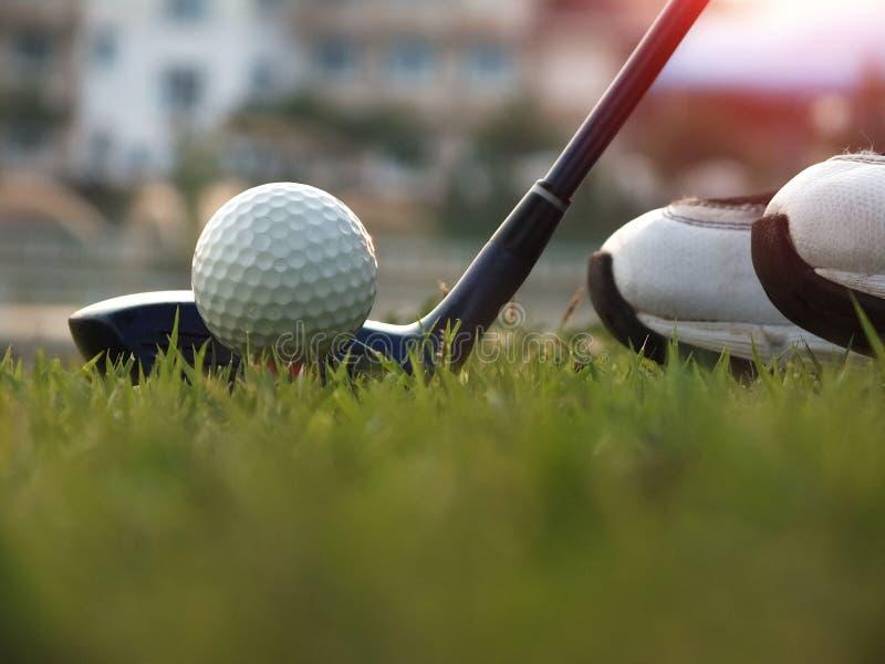 Golfausrüstung in einem grünen Rasen lizenzfreies stockbild