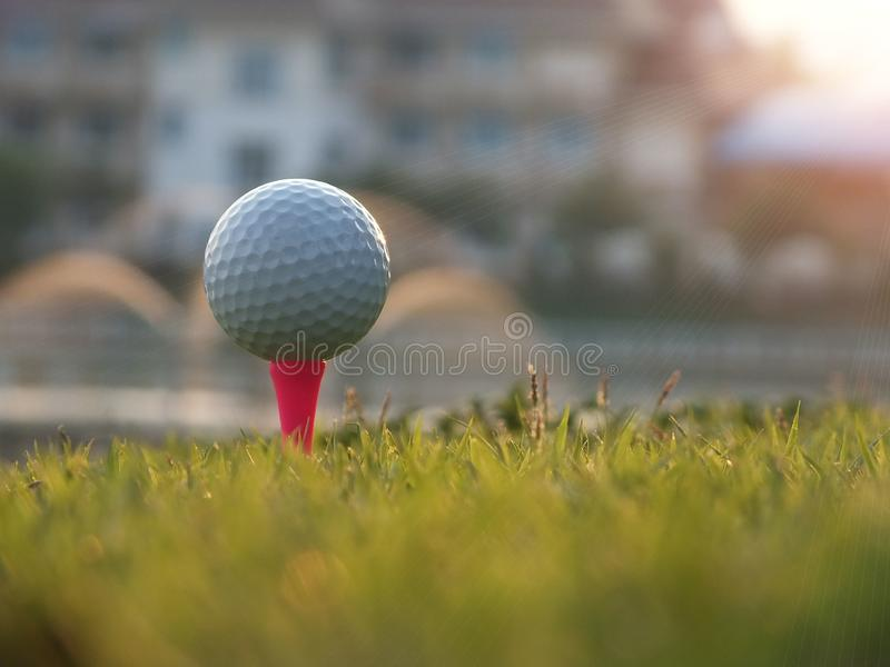 Golfausr?stung in einem gr?nen Rasen stockbilder