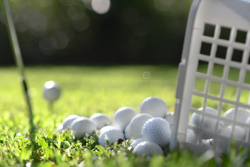 Golfbälle im Korb auf grünem Gras für Praxis lizenzfreies stockbild
