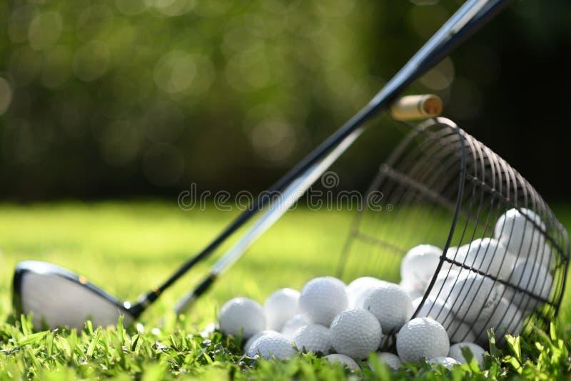 Golfbälle im Korb und Golfclubs auf grünem Gras für Praxis lizenzfreie stockfotografie