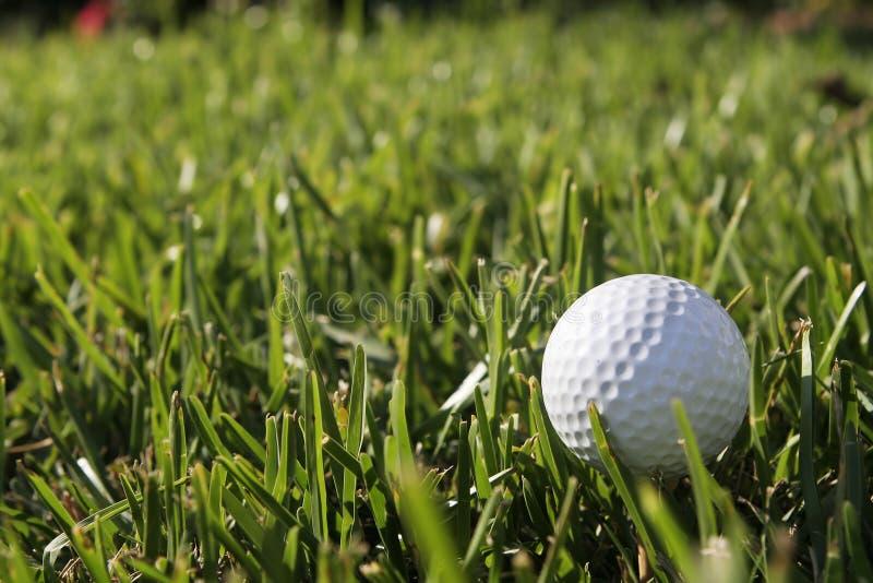 Golfbal royalty-vrije stock foto