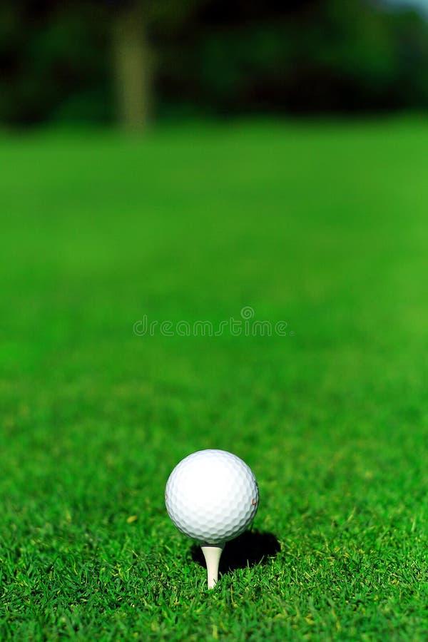Golfbal en T-stuk royalty-vrije stock foto's