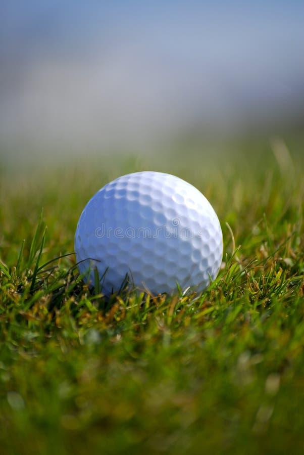 Golfbal in gras royalty-vrije stock foto