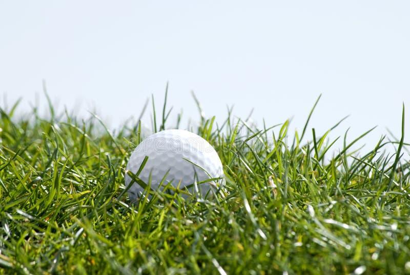 Golfbal in gras royalty-vrije stock foto's