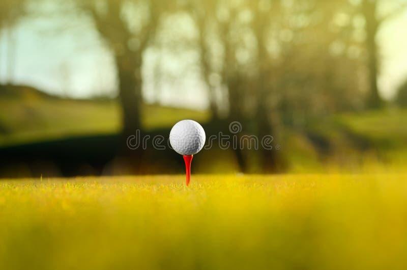 Golfbal op cursus royalty-vrije stock afbeeldingen