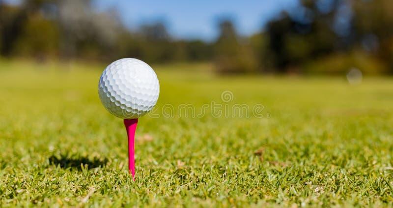 Golfbal op een T-stuk bij een Golfcursus royalty-vrije stock fotografie