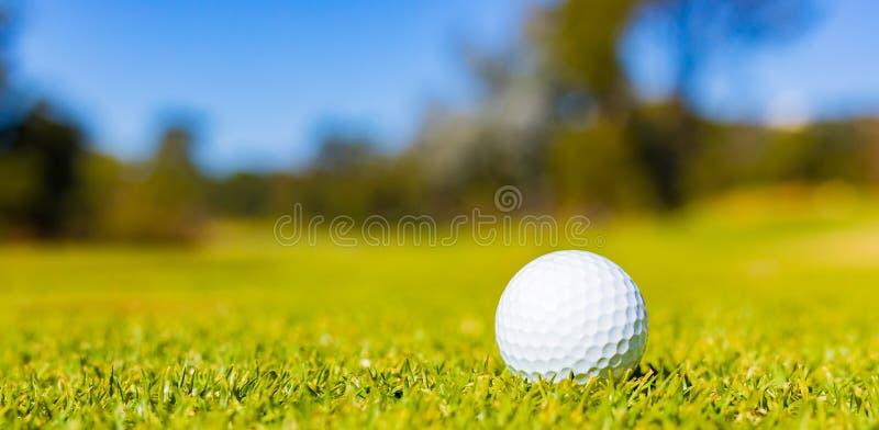 Golfbal op Fairway groen bij een golfcursus stock foto's