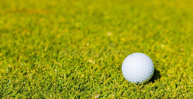 Golfbal op Fairway groen bij een golfcursus stock afbeeldingen