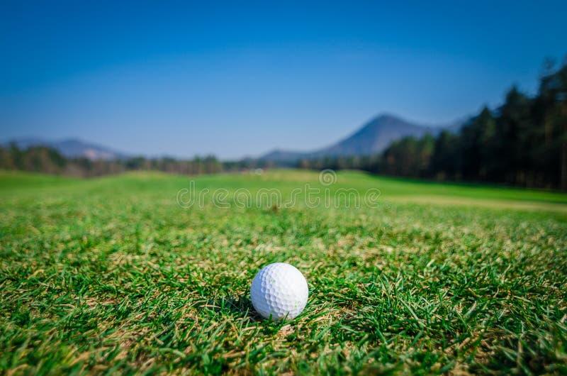 Golfbal op groen gebied met groen gras vooruit en bergen binnen stock fotografie