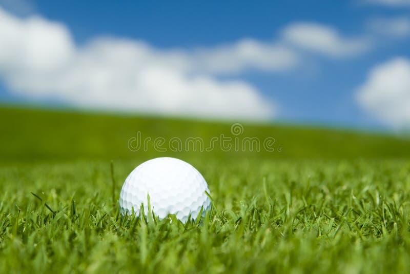 Golfbal op groene fairway stock foto's