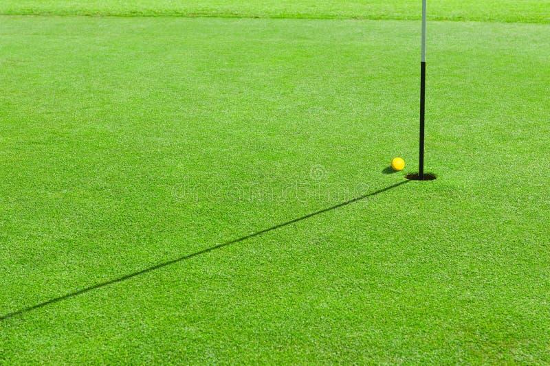 Golfbal op het groene gras stock afbeeldingen
