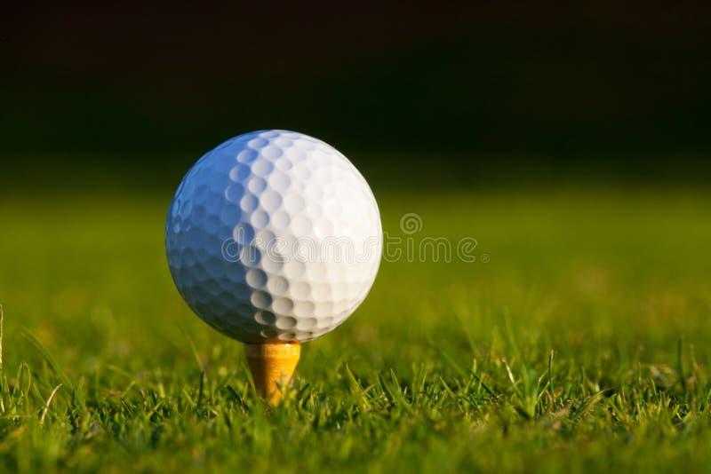 Golfbal op T-stuk dichte omhooggaand royalty-vrije stock fotografie