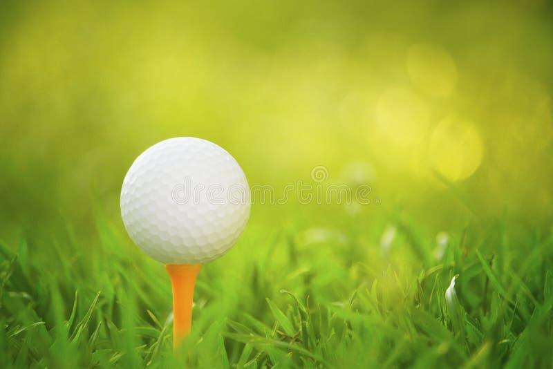 Golfbal op T-stuk in een mooie golfcursus met ochtendzonneschijn royalty-vrije stock fotografie