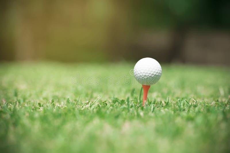Golfbal op T-stuk klaar om worden geschoten Golfbal op groene de yardachtergrond van de grasgolfclub stock foto's