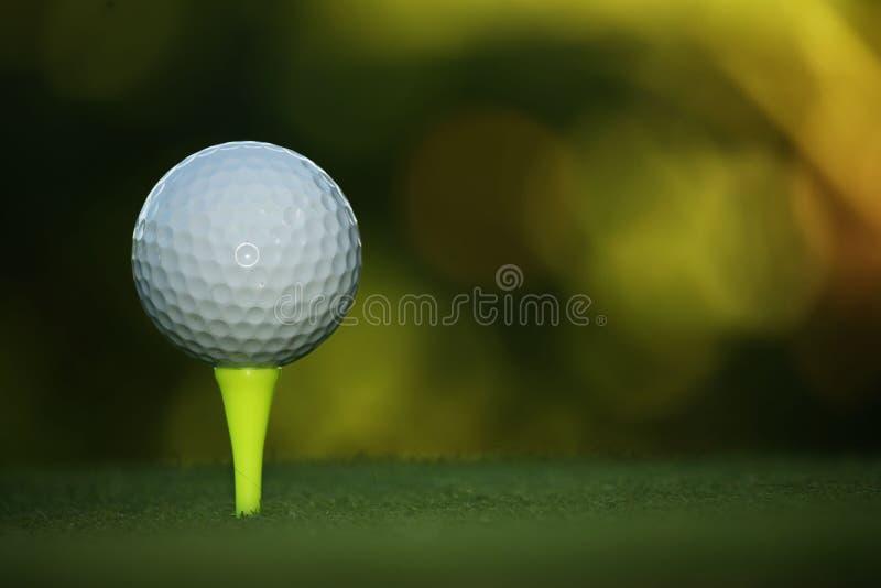 Golfbal op T-stuk in mooie golfcursus bij zonsondergang stock foto's