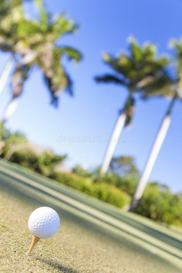 Golfbal op Cursus van het Golf van het T-stuk de Tropische royalty-vrije stock foto's