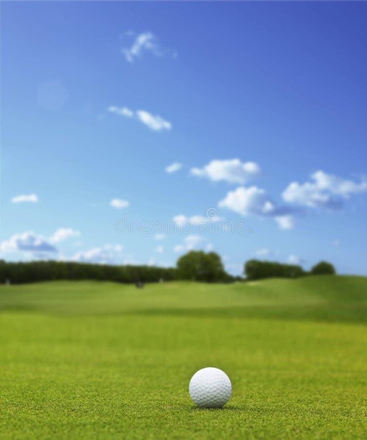 golfball πράσινος στοκ εικόνα