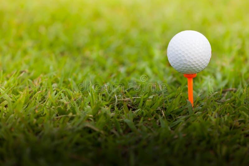 Golfball auf einem T-Stück stockbilder