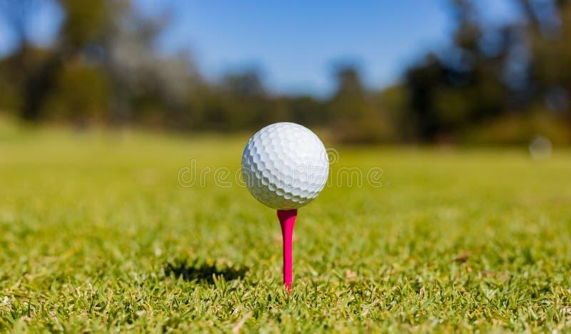 Golfball auf einem T-Stück an einem Golfplatz lizenzfreie stockfotografie