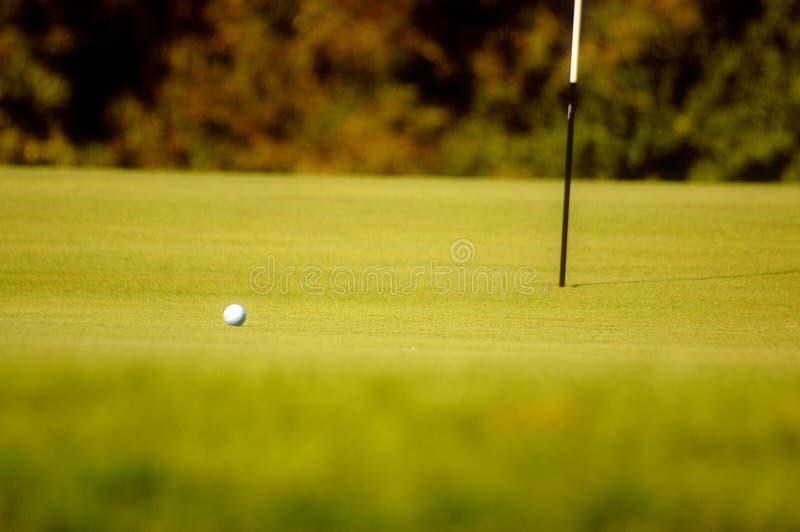 Golfball auf Grün stockfotos