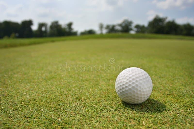 Golfball auf setzendem Grün lizenzfreies stockfoto