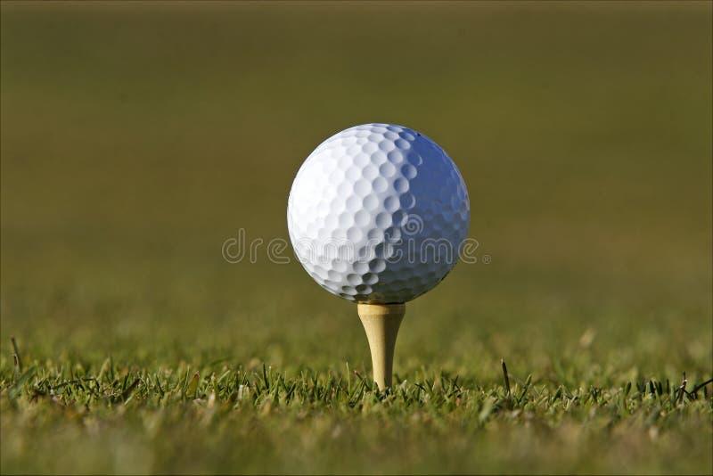 Golfball auf T-Stück stockbild