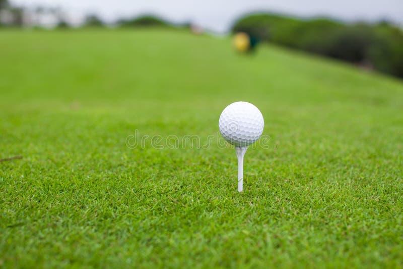 Golfball auf T-Stück in einem schönen Golfclub lizenzfreies stockbild