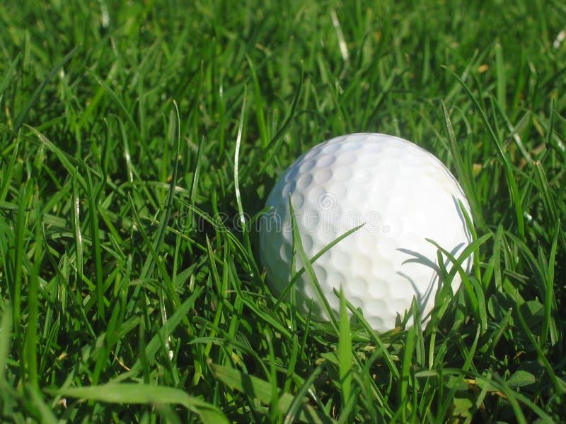 Golfball in erba fotografia stock libera da diritti