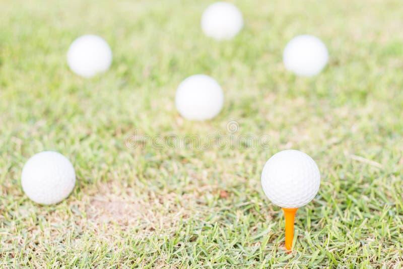 Golfball på gräs arkivbilder
