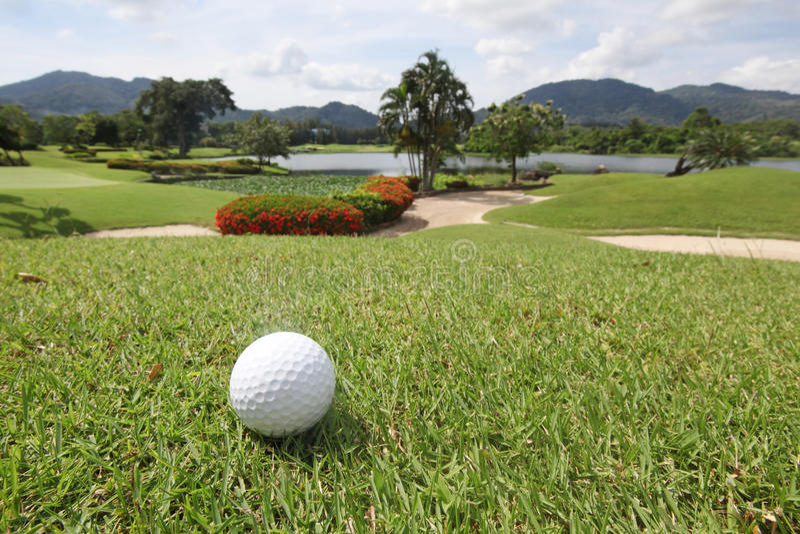 Golfball på gräs arkivfoton