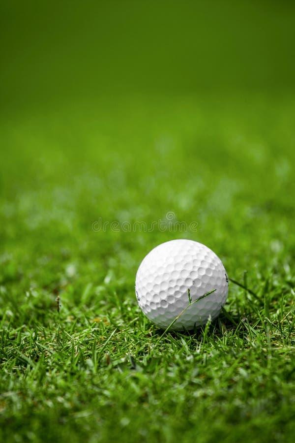 Golfball på kurs royaltyfri fotografi