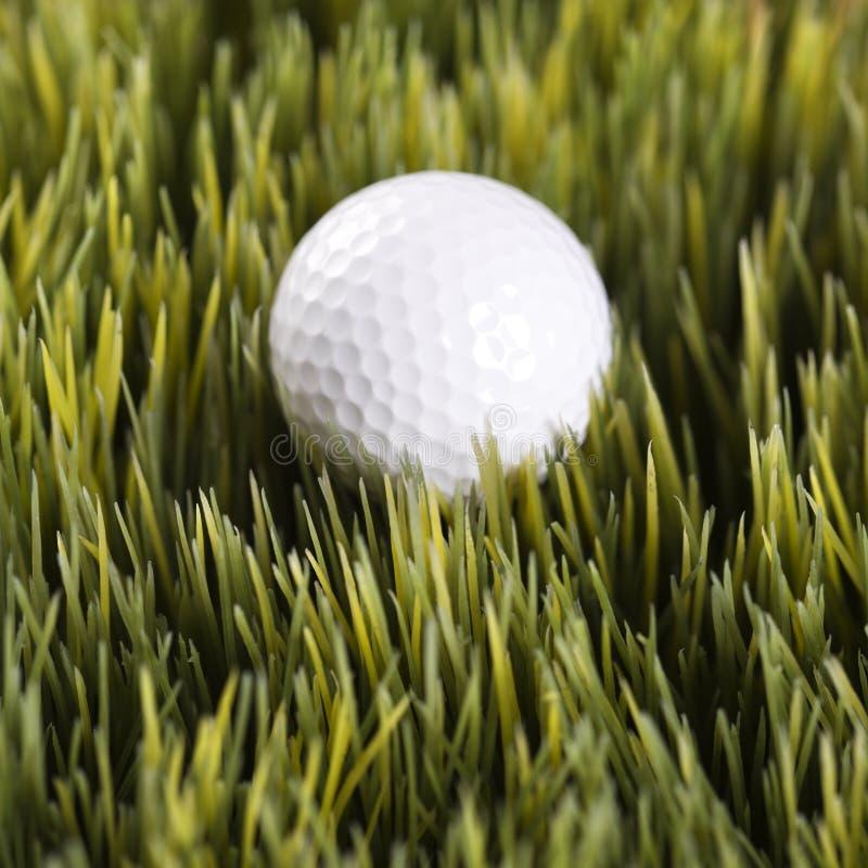 Golfball que descansa na grama. fotografia de stock royalty free