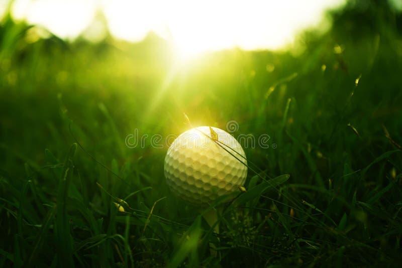 Golfball und Golfclub im schönen Golfplatz am Sonnenunterganghintergrund stockfotos
