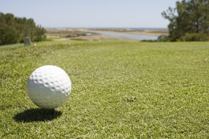 Golfballdetail mit T-Stück am Golfplatz stockfotos