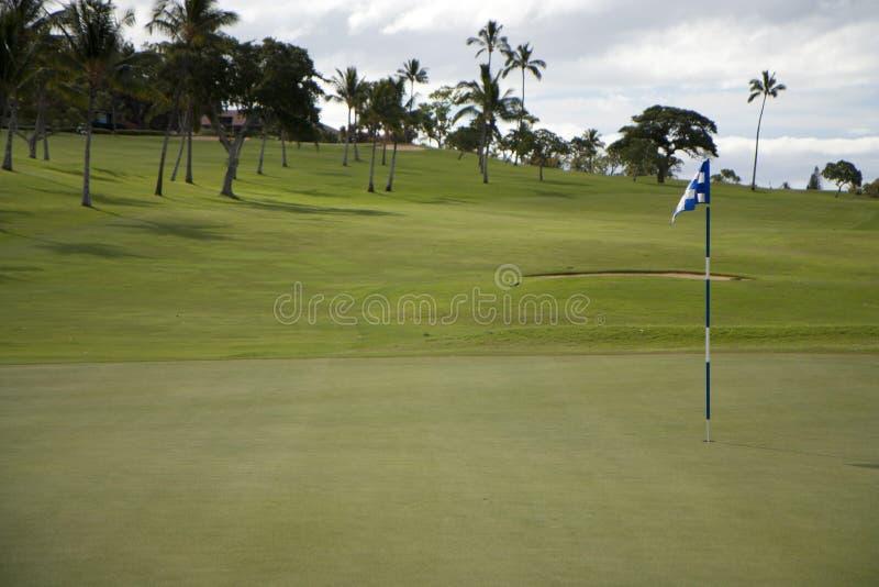 Golfbana royaltyfri bild