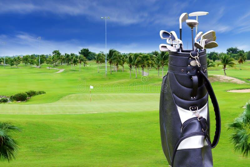 Golfbana med plamträdet och golfpåsen arkivfoto