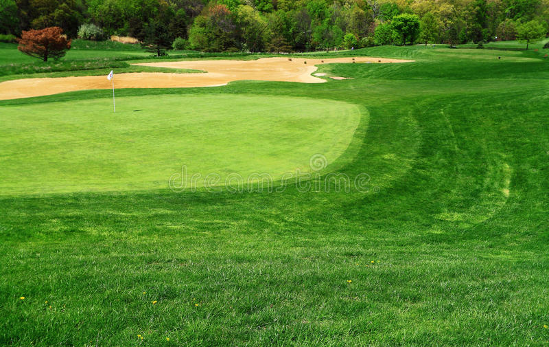Golfbanagräsplan royaltyfria bilder
