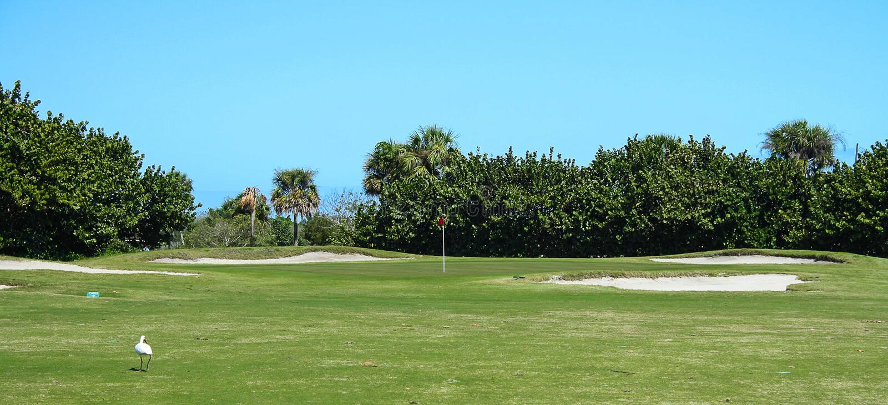 Golfbanaserie royaltyfria foton