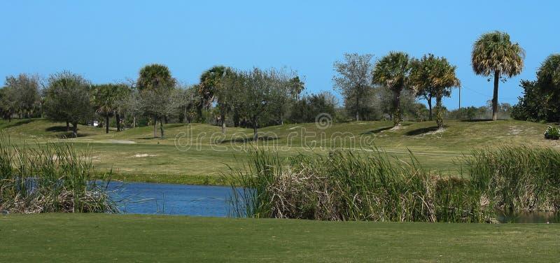 Golfbanaserie arkivbild