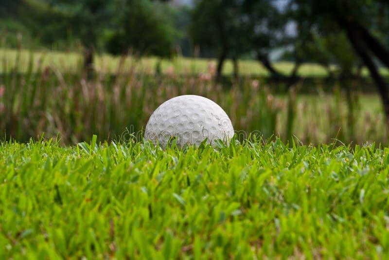 Download Golfboll fotografering för bildbyråer. Bild av green - 27284031